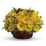 Basket of Sunshine